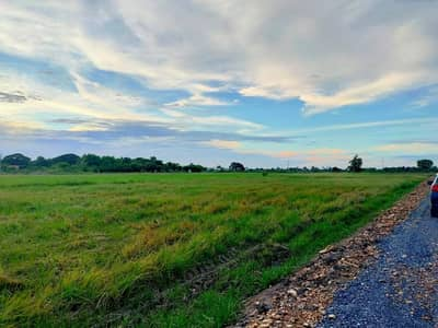 Land for Sale in Mueang Suphan Buri, Suphanburi - The beautiful city of Suphan, 1 and a half rai.