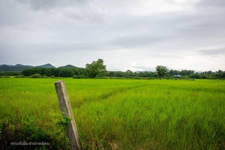 Land for Sale in Mae Tha, Lamphun - River view The most beautiful surrounding mountains, Lamphun, 25 km, raised 4.5 million plots.