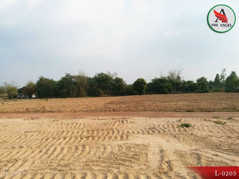 Land reclamation, about 800 meters from road 304, Chachoengsao.