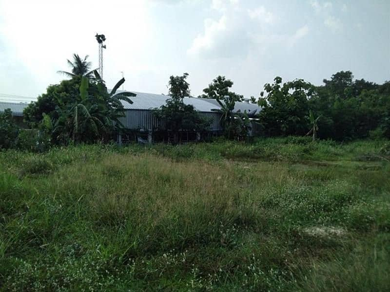 Vacant land with concrete fence And water supply system - electricity, Na Thon Subdistrict, That Phanom District, Nakhon Phanom