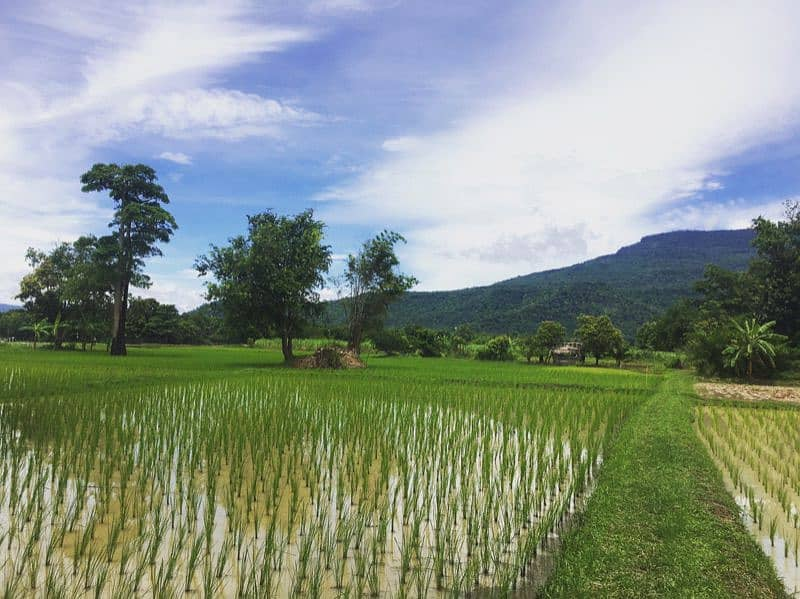 Land for sale in Phu Kradueng district. Have a title deed ready to transfer