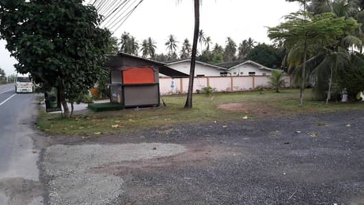 Land for Rent in Thalang, Phuket - LDE10 Land for rent, 125 square wa, good location, next to Thepkasattri Road, Mai Khao Subdistrict, Thalang District, Phuket Province