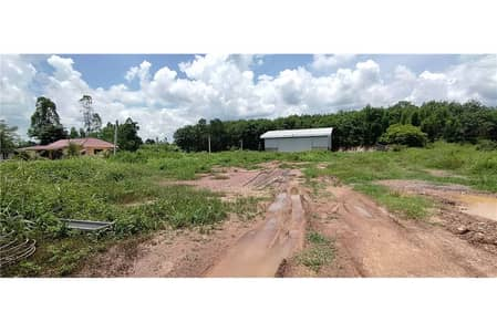 Land for Sale in Thoeng, Chiangrai - Land 1-3-29 rai with warehouse Adjacent to a 4-lane road, Route 1021, Thoeng-Chiang Kham