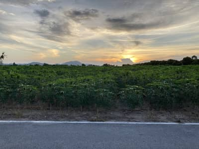 Land for Sale in Ban Chang, Rayong - Land for sale (100 Sq. wha) T. Sumneakton A. Banchang