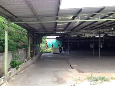 Land for Sale in Mueang Nakhon Ratchasima, Nakhonratchasima - Land with warehouse