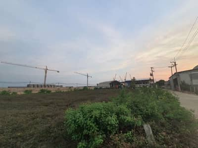 Land for Rent in Lam Luk Ka, Pathumthani - Quick rent, land reclamation, area 1 rai 2 jobs, beautiful land plots, suitable for warehouses, warehouses, factories, cheap apartments, can talk