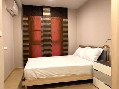 1 Bedroom Condo for Rent in Phra Khanong, Bangkok - The Tree Onnut Station fully furnished clean peaceful convenient BTS Onnut