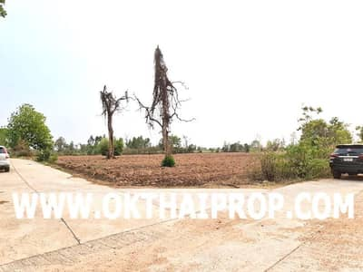 Land for Sale in Nong Bua Rawe, Chaiyaphum - Land 35 rai Nong Bua Rawe Chaiyaphum for sale cheap