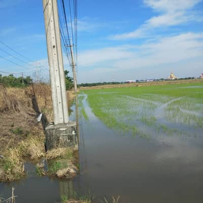 Land for sale 34-2-76 rai next to Bang Nam Priao Road - Chachoengsao. Near the high speed train station connection point