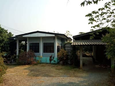 2 Bedroom Home for Sale in Ban Hong, Lamphun - House and land for sale, 1 rai 1 ngan