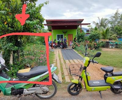 Land for Sale in Bang Yai, Nonthaburi - Land for sale 48 wa from Central West Gate. Enter Lat Pla Duk Road to the end of the road and turn right into Wat Seniwong for 2 kilometers. Price 420.000