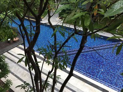 1 Bedroom Condo for Sale in Kathu, Phuket - For Rent, Sale D Condo Creek Kathu Phuket Pool View Studio room