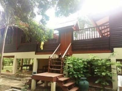 4 Bedroom Home for Sale in Wichian Buri, Phetchabun - Beautiful Thai house With fruit orchards, area 20 rai