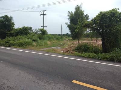 Land for Sale in Kabin Buri, Prachinburi - The garden has a mountain view, good atmosphere, an area of 4 rai over a title deed, suitable for home-made fruit orchards