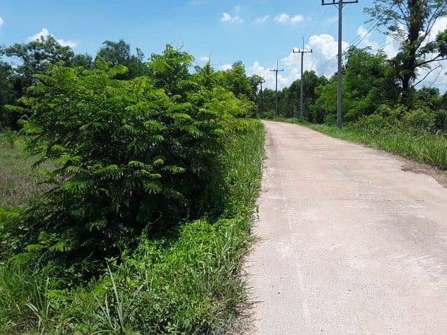 Land for sale on a concrete road, 3 rai of land with electricity, water supply in the village