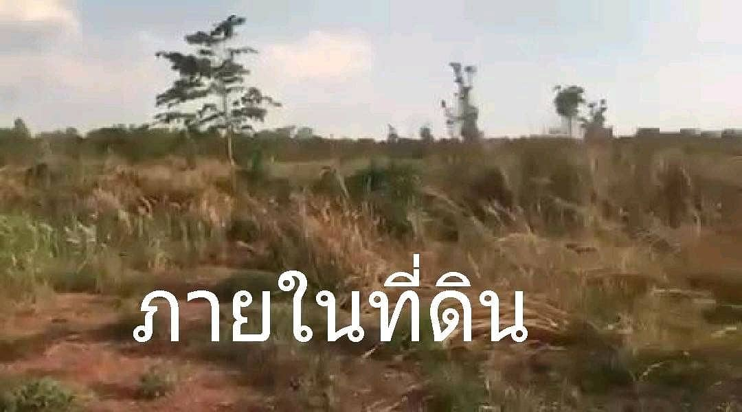 Land for sale on the main road, 4 lanes, Loei Province, Wang Saphung District, to Erawan District, Nong Bang Lam Phu