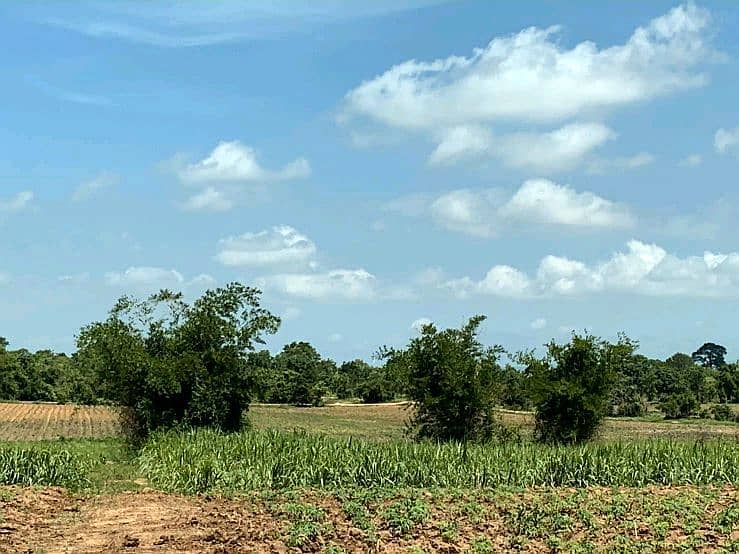Selling 2 beautiful land plots next to each other, cheap, ready to sell, ready to transfer