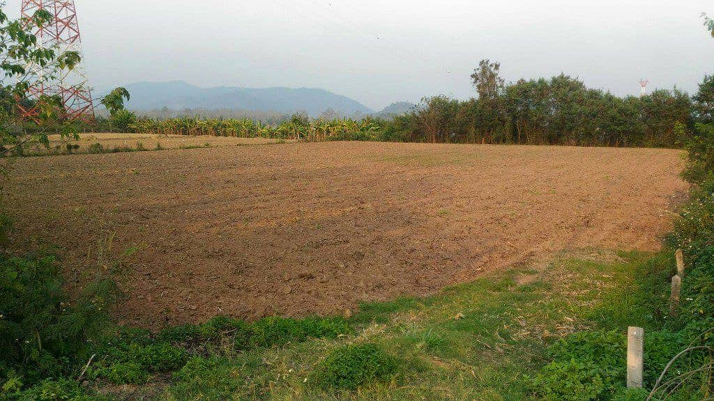 Land for sale in Mekong River near the Golden Triangle, almost 4 rai