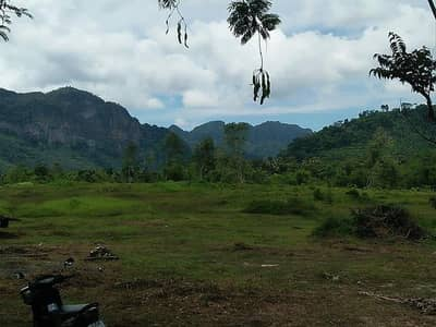 Land for Sale in Mueang Phang-Nga, Phangnga - Land for sale in a beautiful plot of land next to a stream Mountain view surrounding Phang Nga District, suitable for a resort