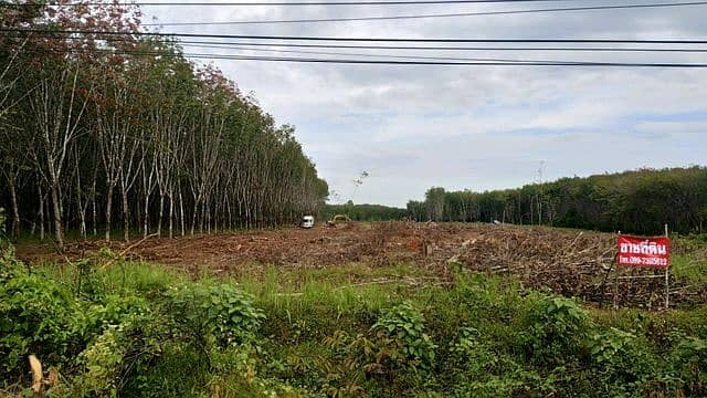 Land for sale in Thung Song District