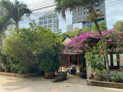 2 Bedroom Home for Rent in Bang Lamung, Chonburi - Beach House for Rent Pattaya Chonburi Chomtien Beach 1 min walk to the beach 2 bedrooms 2 restrooms 1 living room