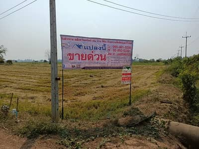 Land for Sale in Taphan Hin, Phichit - Land for sale 15-1-41.1 rai