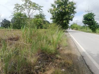 Land for Sale in Mae Chan, Chiangrai - Land on the black road