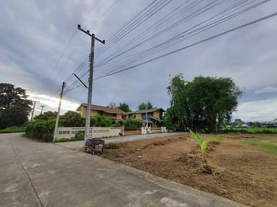 Land for Sale in Mueang Chiang Mai, Chiangmai - Land in the city of Chiang Mai, Tha Sala