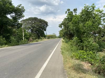 Land for Sale in Wiang Nong Long, Lamphun - Selling to pay debts. Longan garden, next to the highway, has a title deed of 169.2 sq m. Sell for only 390,000 baht, ready to transfer.