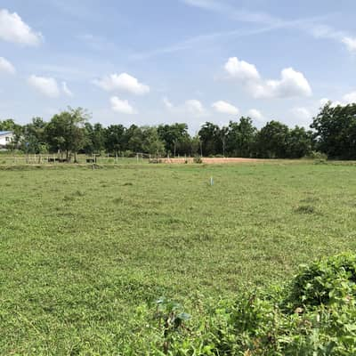 Land for Sale in Mueang Nakhon Nayok, Nakhonnayok - Land for sale in Nakhon Nayok