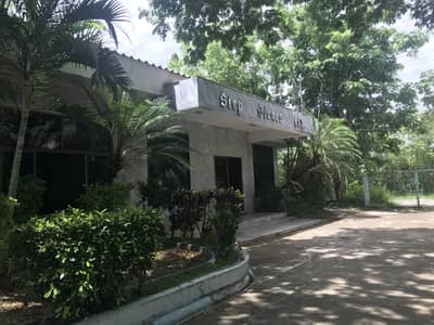 Factory for Sale in Mueang Lamphun, Lamphun - FACTORY FOR SALE MUEANG LAMPHUN